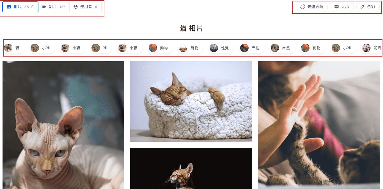 搜尋圖片後還可以透過過濾器來挑選特定的圖片